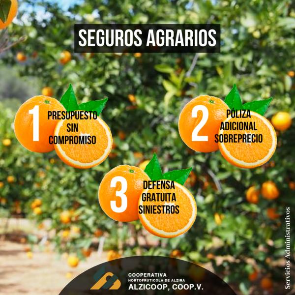 SEGUROS AGRARIOS AGOSTO 2018